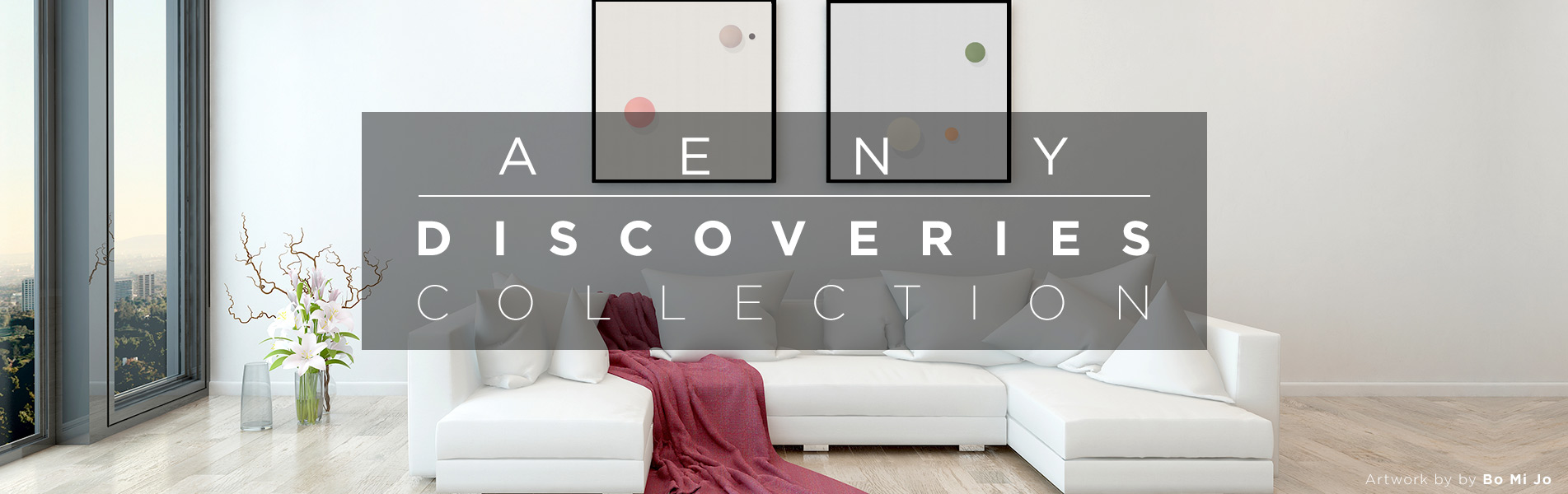AENY Discoveries Collection