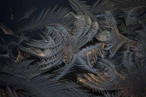 Frost On My Window by Peter Andrew Jeschke
