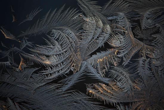 Frost On My Window by Peter Andrew Jeschke