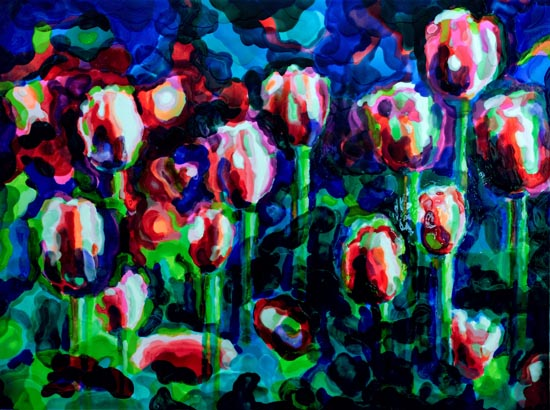 Tulips by Jay Chung